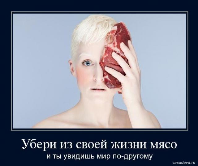 можно картинка как можно не любить мясо имеют шерсть