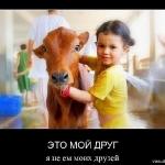 Вегетарианство - демотиваторы