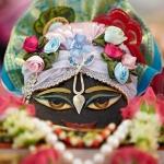195 Фестиваль Садху-санга 2012