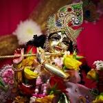 65 Фестиваль Садху-санга 2012