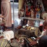 Вишнуджана играет для Божеств Радха-Дамодара